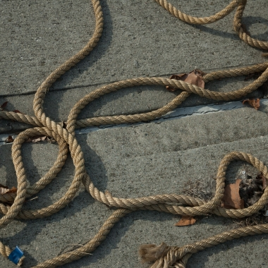 discarded ropes on a dock