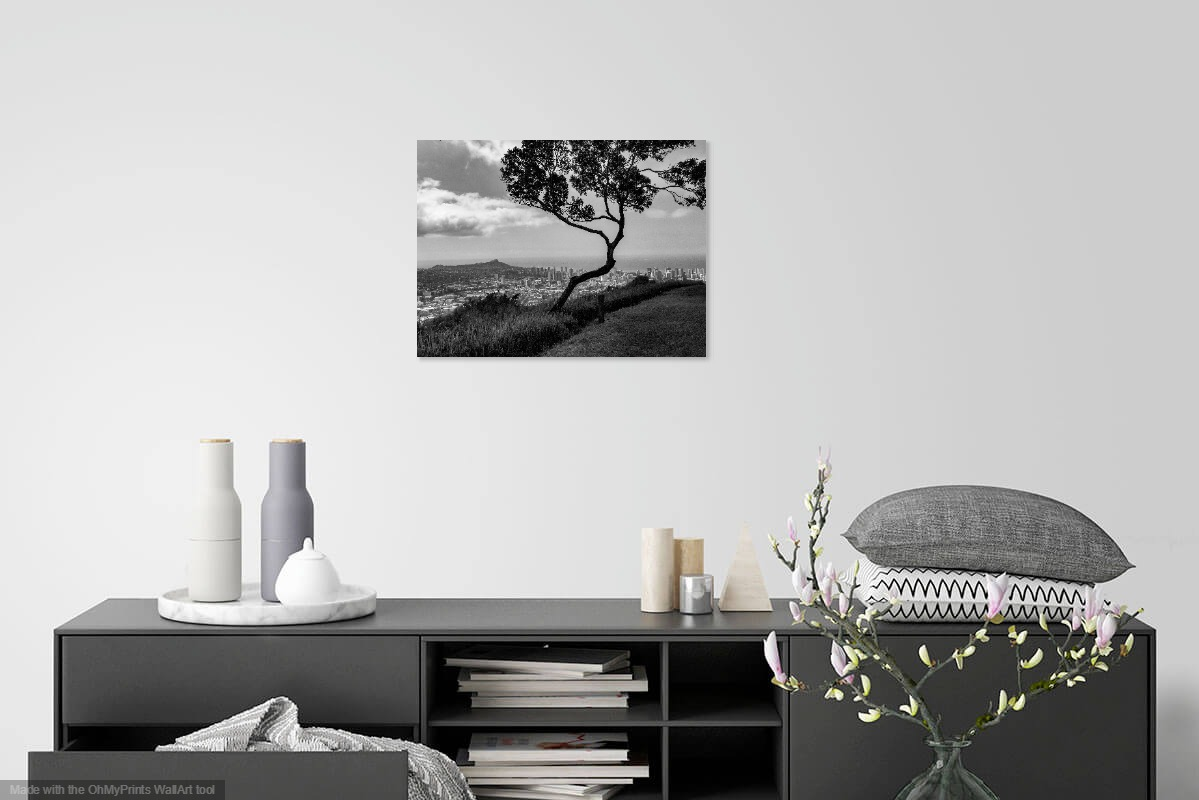 Tree in foreground, Honolulu skyline in background, black and white photograph