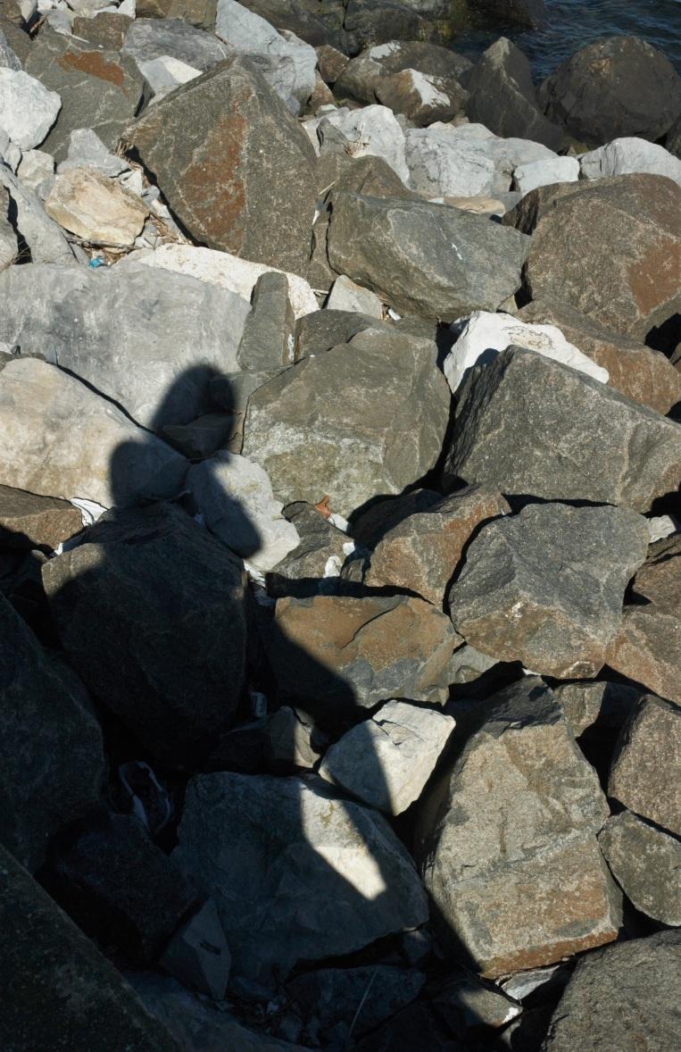 on the rocks edited