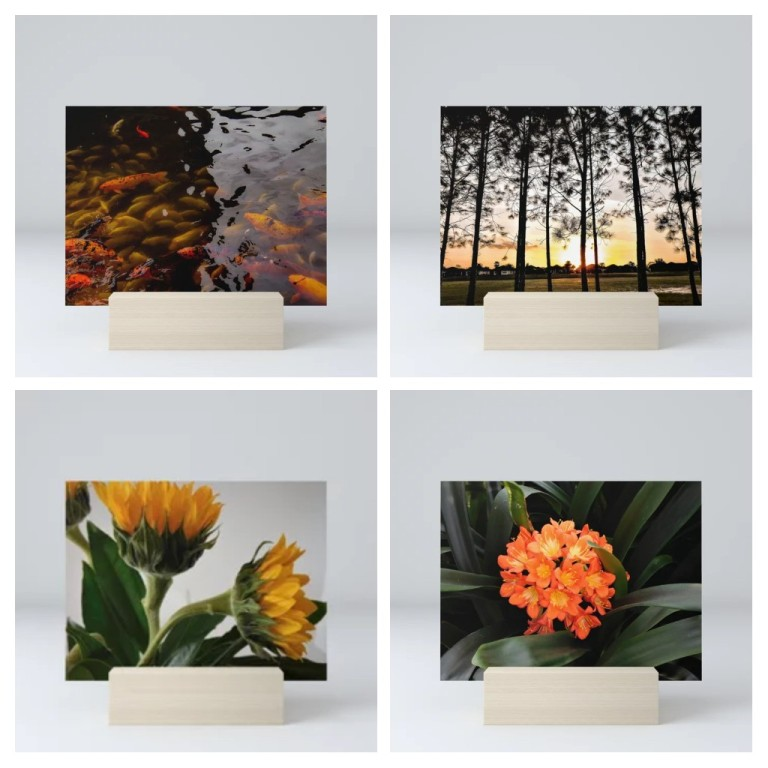 Koi Pond, Pines at Sunset, Sunflowers and Natural Bouquet all available on Society6.com in the LensMomentsNS shop
