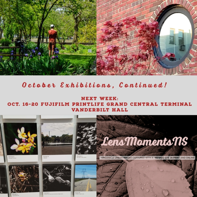 October Exhibitions 2