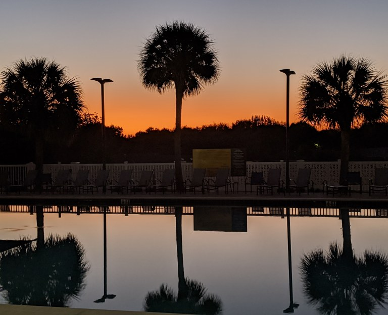 Palms, Pool & Sunset, a photograph by LensMomentsNS - Nichole Spates (c) 2019